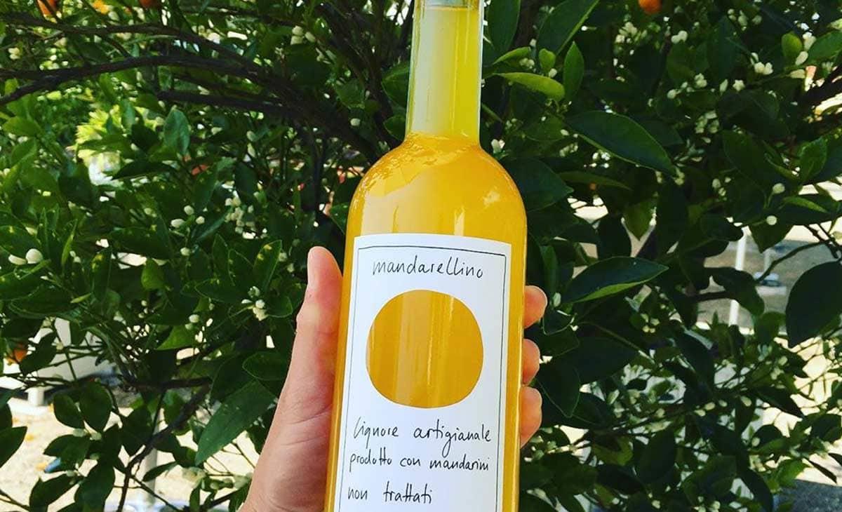 Best Limoncino Limoncello Rezepte 100% Frisch   Foodspotters